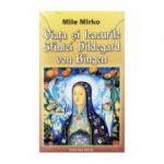 Viata si leacurile Sfintei Hildegard von Bingen-Mille Mirko
