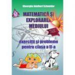 Matematica: exercitii si probleme pentru clasa a II-a