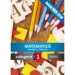 Matematica-Culegere pentru clasa I