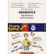 Gramatica. Fise de lucru. (itemi de evaluare) clasa a VI-a