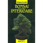 Bonsai pentru interioare