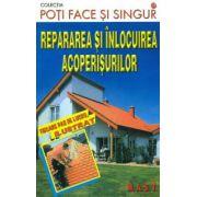 Repararea si inlocuirea acoperisurilor - Poti face si singur