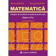 Matematica. Clasa a V-a. Culegere de probleme si subiecte pentru teze. Semestrul II