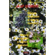 Plantele medicinale si durerile reumatice • Plantele medicinale si organele respiratorii