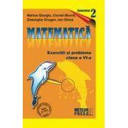 Matematica. Exercitii si probleme. Clasa a VI-a, semestrul al II-lea 2009-2010