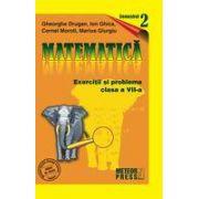 Matematica. Exercitii si probleme. Clasa a VII-a, semestrul al II-lea 2009-2010