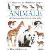 Animale din Europa, Africa, Asia… si multe altele!