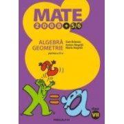 ALGEBRA. GEOMETRIE. CLASA A VII-A. PARTEA A II-A (2000+5/6)
