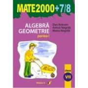Algebra. Geometrie (clasa a VII-a, partea I) (MATE 2000+7/8)