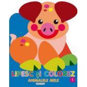 Lipesc si colorez animalele mele 1