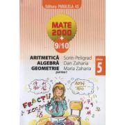 Aritmetica, algebra, geometrie - clasa a V-a, partea I (anul scolar 2009-2010)