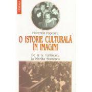 O istorie culturala in imagini. De la George Calinescu la Nichita Stanescu