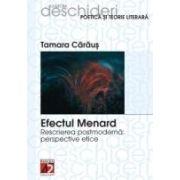 EFECTUL MENARD. RESCRIEREA POSTMODERNA: PERSPECTIVE ETICE