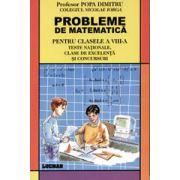 Probleme De Matematica - Pentru Clasele A Viii-A