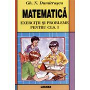 Matematica - Exercitii si Probleme pentru cls. 1