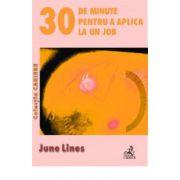 30 de minute pentru a aplica la un job