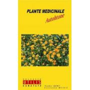 PLANTE MEDICINALE AUTOHTONE