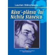 Rasu`-plansu` lui Nichita Stanescu