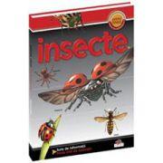 Insecte. Prima mea enciclopedie