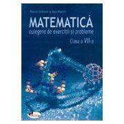 Matematica. Culegere de exercitii si probleme – clasa a VII-a