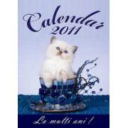 Calendar cu Pisici 2011