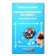 Culegere de probleme de algebra, clasele IX-XII