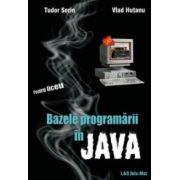 Bazele programării în Java