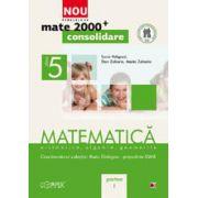 MATEMATICA. ARITMETICA, ALGEBRA, GEOMETRIE. CLASA A V-A. PARTEA I - CONSOLIDARE