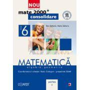MATEMATICA. ALGEBRA, GEOMETRIE. CLASA A VI-A. PARTEA I - CONSOLIDARE
