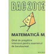 Bacalaureat 2013 Matematica M2