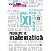 Probleme de matematica pentru clasa a XI - a