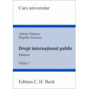 Drept international public. Sinteze. Editia 7