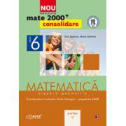 MATEMATICA. ALGEBRA, GEOMETRIE. CLASA A VI-A. PARTEA II