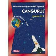 Cangurul 2014 - Concursul International de Matematica Aplicata pentru clasele IX-X