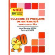 Culegere de probleme de matematica pentru clasa a V-a (puisorul)