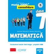 MATEMATICA. ALGEBRA, GEOMETRIE. CLASA A VII-A. PARTEA II - Consolidare