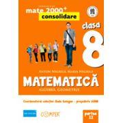 MATEMATICA. ALGEBRA, GEOMETRIE. CLASA A VIII-A. PARTEA II - Consolidare