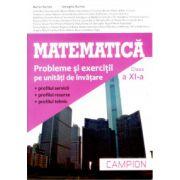 Matematică pentru clasa a XI-a - Campion