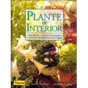 Plante de interior - Ghid pentru alegerea şi îngrijirea plantelor de interior