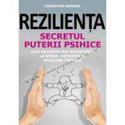 REZILIENŢA. SECRETUL PUTERII PSIHICE • Cum devenim mai rezistenţi la stres, depresii şi epuizare psihică