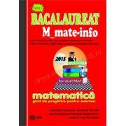 Bacalaureat 2015 M_mate-info-ghid de pregatire pentru examen