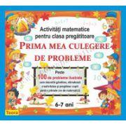 PRIMA MEA CULEGERE DE PROBLEME ACTIVITATI MATEMATICE PENTRU CLASA PREGATITOARE