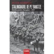 STALINGRADUL DE PE YANGTZE. Bătălia pentru Shanghai – 1937