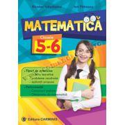 Matematică. Clasele V-VI