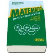 Matematica pentru clasa a VII-a. Exercitii. Probleme. Teste