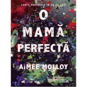 O mama perfecta-Aimee Molloy
