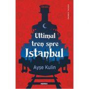 Ultimul tren spre Istanbul-Ayse Kulin