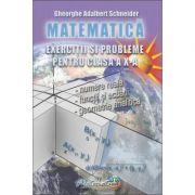 Matematica - exercitii si probleme pentru clasa a X - a