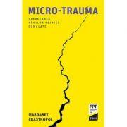 Micro-trauma (Vindecarea ranilor psihice cumulate)