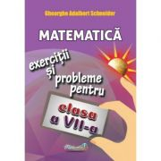 Matematica: exercitii si probleme, clasa a VII-a